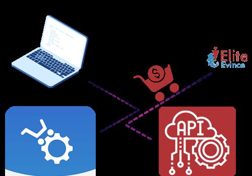 eCommerce Plugin & API Integration Services